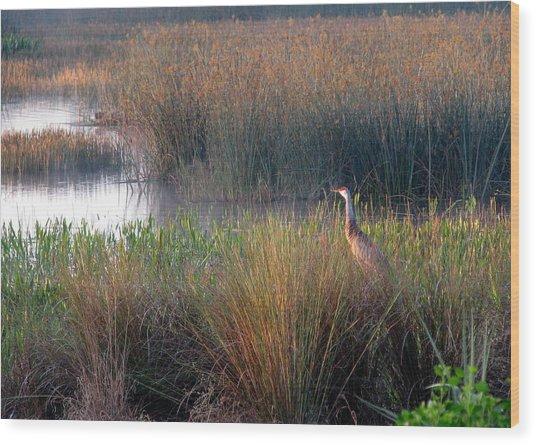 Sunrise On The Wetlands Wood Print