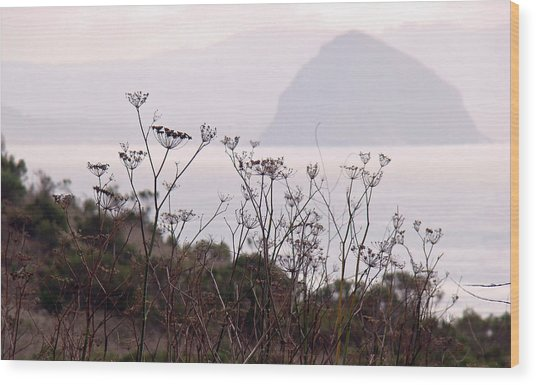 Sunrise Over The Rock Wood Print