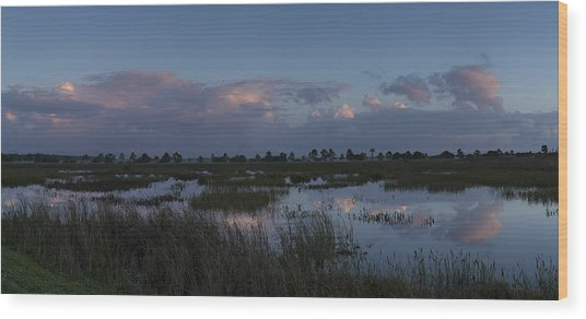Sunrise Over The Wetlands Wood Print