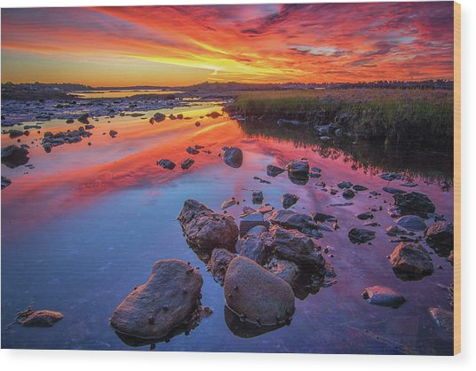 Sunrise Reflections In Harpswell Wood Print
