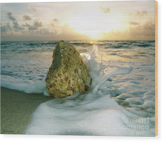 Sunrise Seascape Wisdom Beach Florida C4 Wood Print