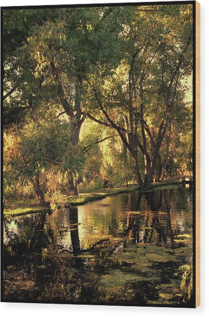 Sunrise Springs Wood Print