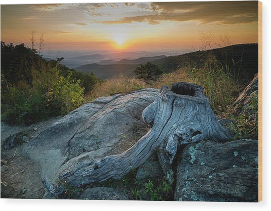Wood Print featuring the photograph Sunrise Stump by Ryan Wyckoff