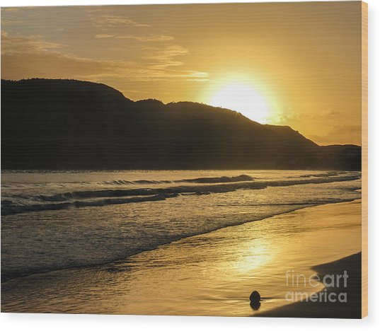 Sunrise Surprise Wood Print