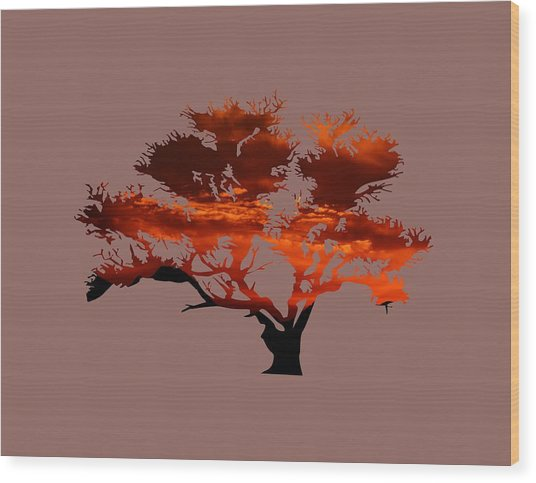 Sunrise Tree 2 Wood Print