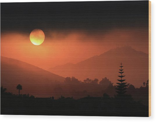Sunrise With Coastal Fog Wood Print by Robin Street-Morris