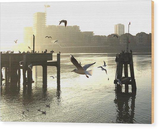 Sunrise With Seagulls Wood Print