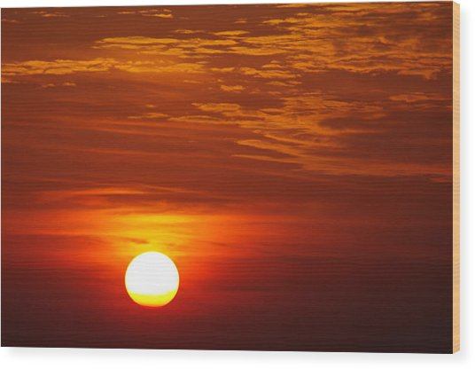 Sunset 11 Wood Print by Don Prioleau