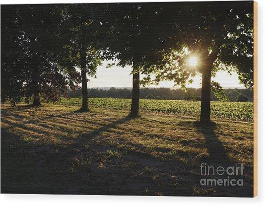 Sunset Along Elgin Mills Road-2 Wood Print