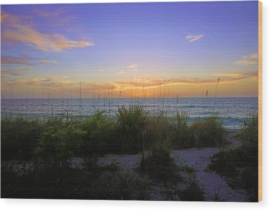 Sunset At Barefoot Beach Preserve In Naples, Fl Wood Print