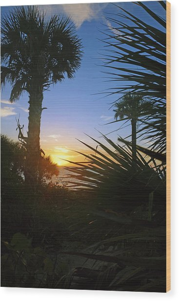 Sunset At Bearefoot Beach In Naples Wood Print