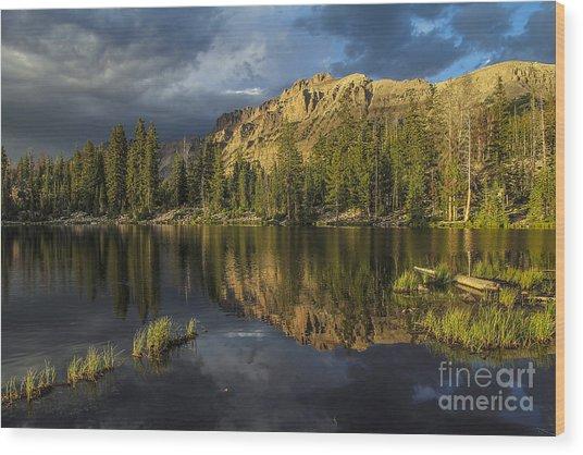 Sunset At Butterfly Lake Wood Print
