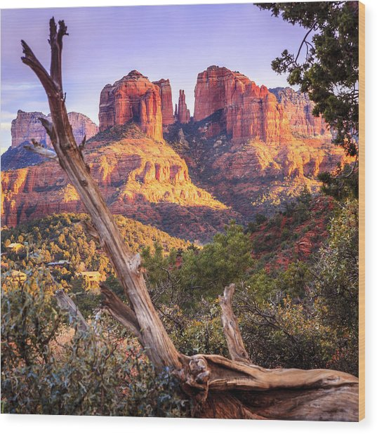 Sunset At Cathedral Rock Wood Print