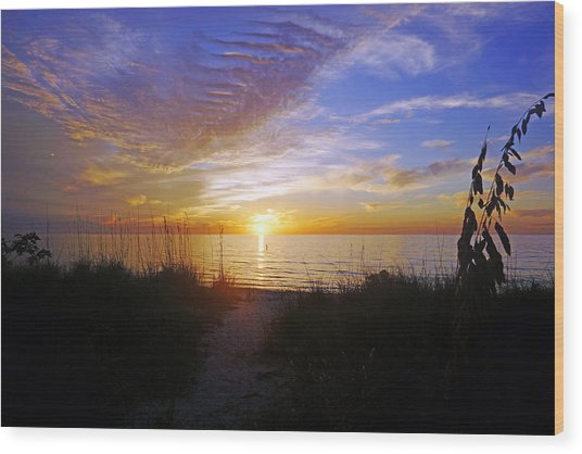 Sunset At Delnor Wiggins Pass State Park In Naples, Fl Wood Print