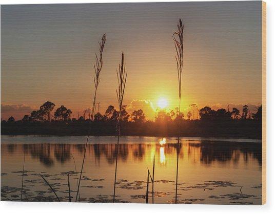 Sunset At Gator Hole 3 Wood Print