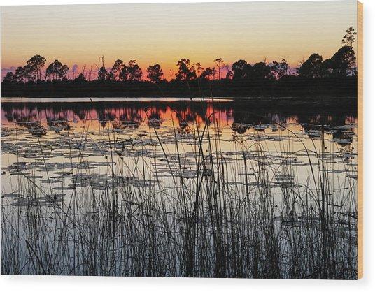 Sunset At Gator Hole Wood Print