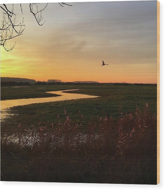Sunset At Holkham Today  #landscape Wood Print