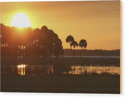 Sunset At Myakka River State Park In Florida, Usa Wood Print