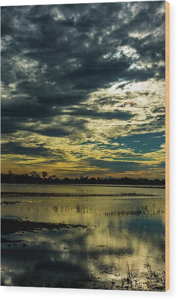Sunset At The Wetlands Wood Print