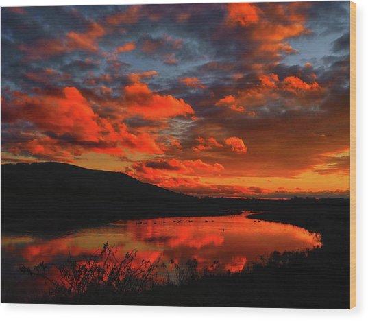 Sunset At Wallkill River National Wildlife Refuge Wood Print