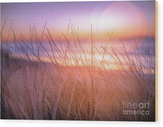 Sunset Bokeh Wood Print by Inger Vaa Eriksen