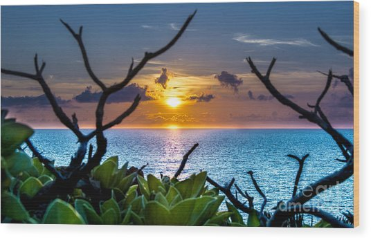 Sunset By The Point Wood Print