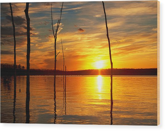 Wood Print featuring the photograph Sunset By The Water by Angel Cher