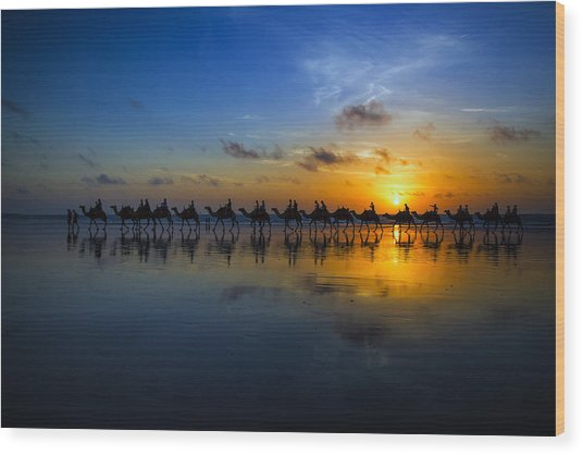 Sunset Camel Ride Wood Print by Louise Wolbers