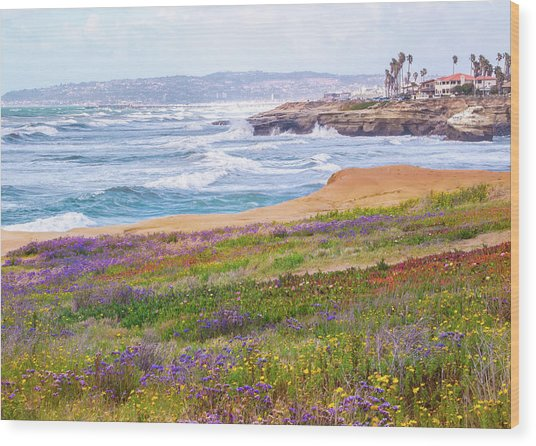 Sunset Cliffs In Spring Wood Print