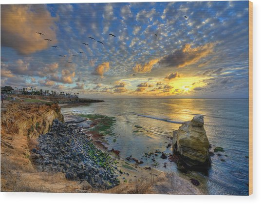 Sunset Cliffs With Brown Pelicans Wood Print