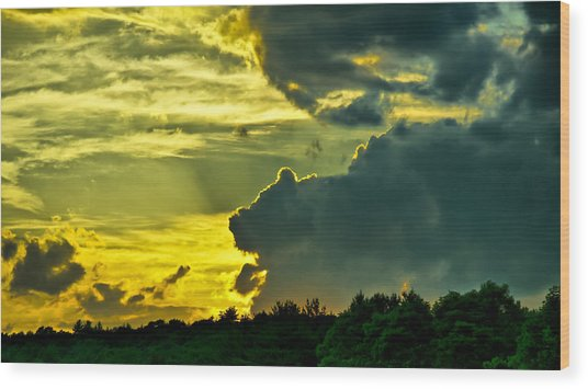Sunset Cloud Animal Wood Print by Edward Myers