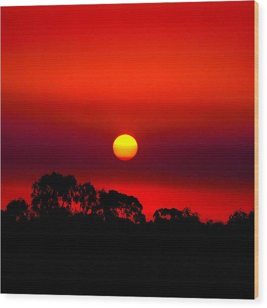 Sunset Dreaming Wood Print