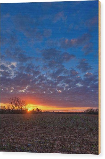 Sunset Field Wood Print