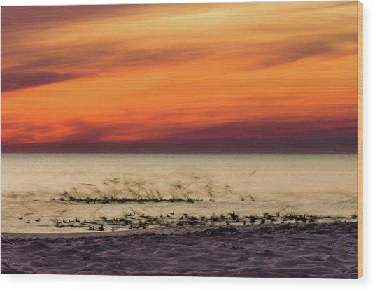 Sunset Flock Wood Print