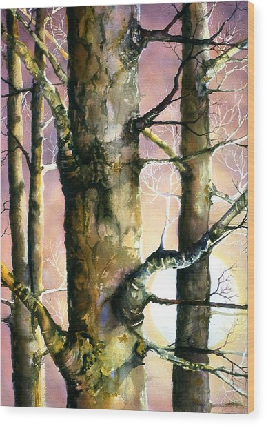 Sunset Forest Wood Print by Connie Williams