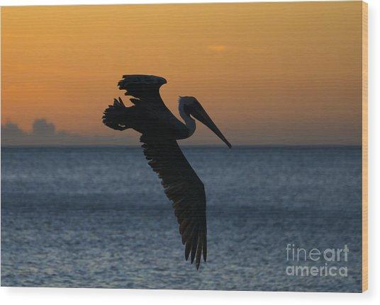 Sunset Glide Wood Print