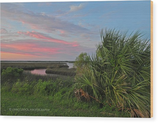 D32a-89 Sunset In Crystal River, Florida Photo Wood Print
