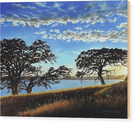 Sunset In Lucerne Wood Print