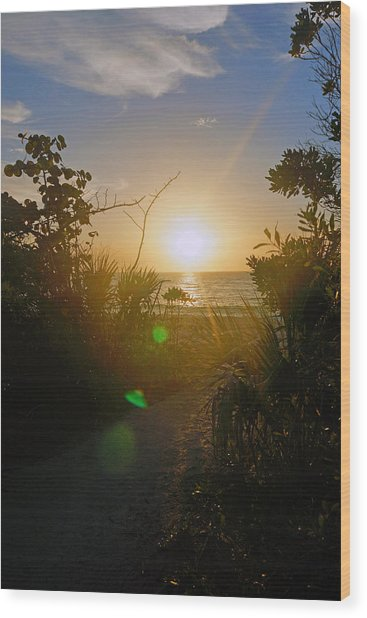 Sunset In Naples At Barefoot Beach Wood Print