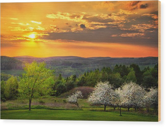 Sunset In Tioga County Pa Wood Print