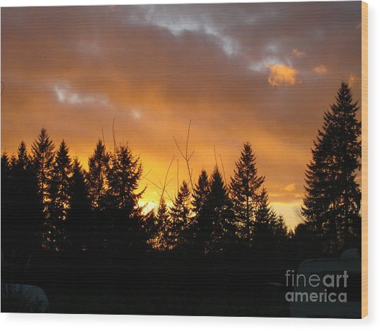 Sunset My Front Yard Wood Print by Mary Jo Zorad