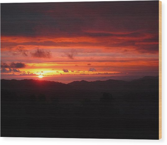 Sunset No.7 Wood Print by Gregory Young