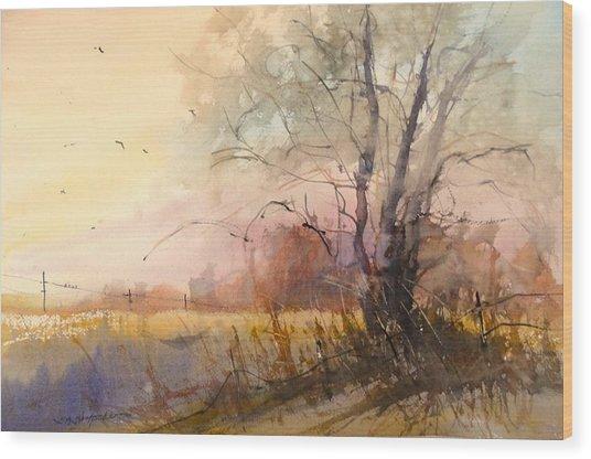 Sunset On 108th Wood Print