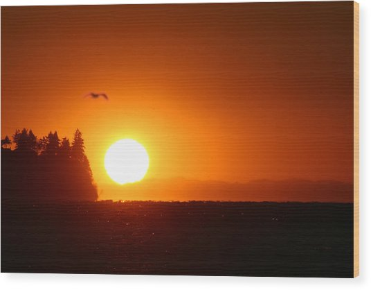 Sunset On Birch Bay Wood Print by Julius Reque