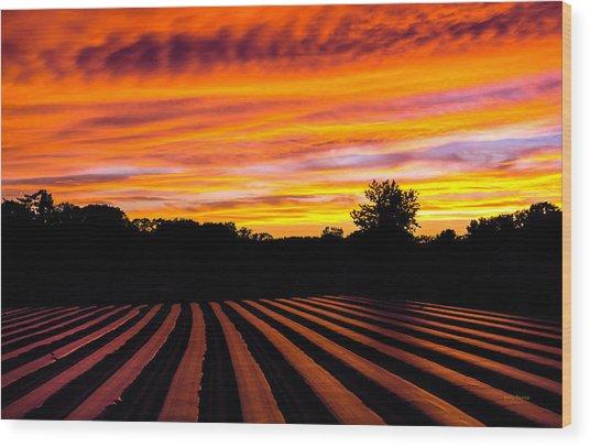 Sunset On The Farm Wood Print