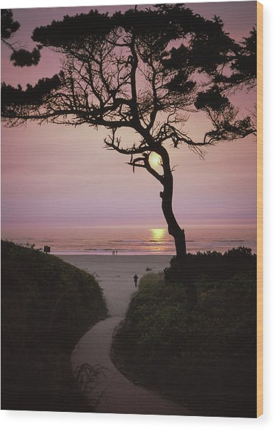 Sunset On The Zen Path Wood Print