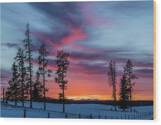 Sunset Over A Farmers Field, Cowboy Trail, Alberta, Canada Wood Print