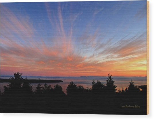 Sunset Over Cypress Wood Print