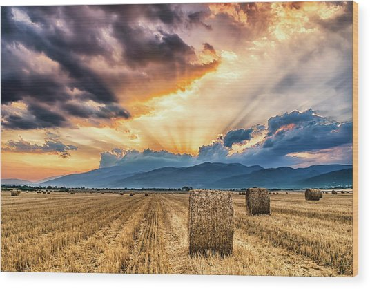 Sunset Over Farm Field With Hay Bales Wood Print