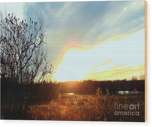 Sunset Over Fields Wood Print